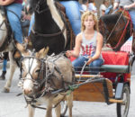 Ослик и колесница / © pixabay.com