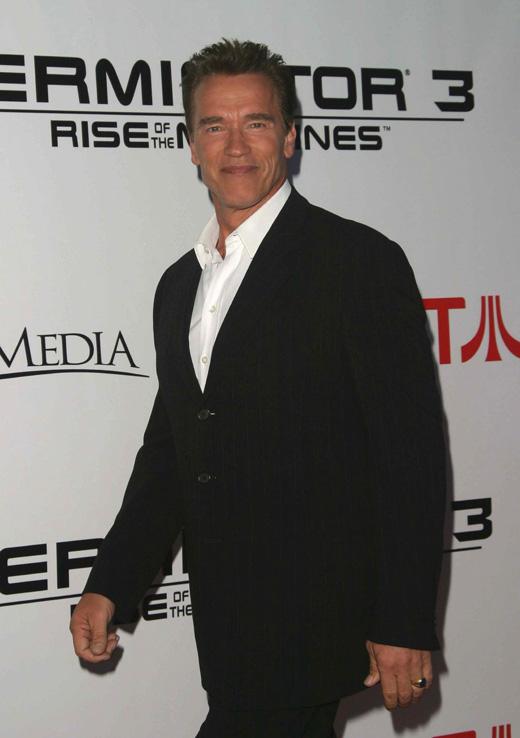 Арнольд Шварценеггер (Arnold Schwarzenegger) / Joe Seer / Shutterstock.com