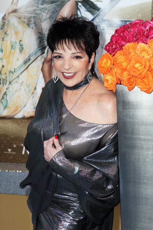 Лайза Минелли (Liza Minnelli) / Debby Wong / Shutterstock.com