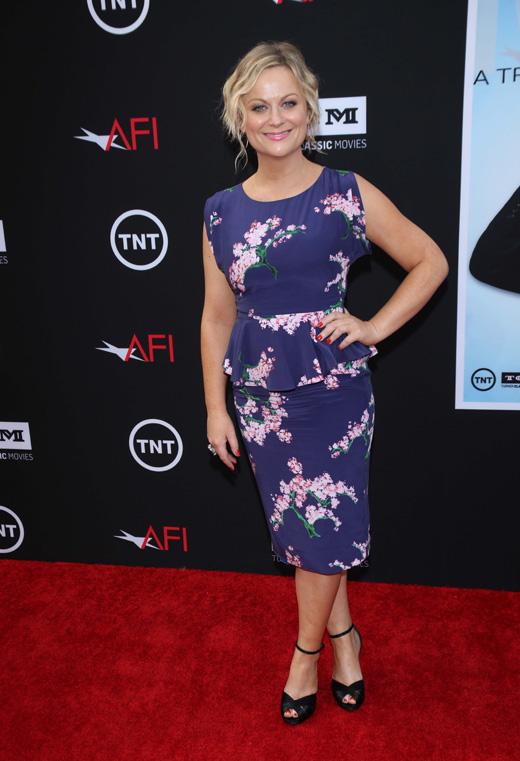 Эми Полер (Amy Poehler) / © s_bukley / Shutterstock.com
