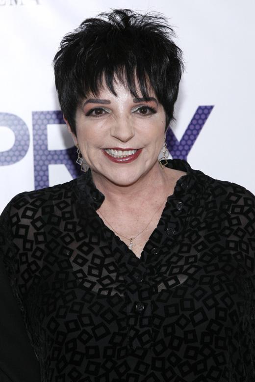 Лайзы Минелли (Liza Minnelli) / © stocklight / Shutterstock.com