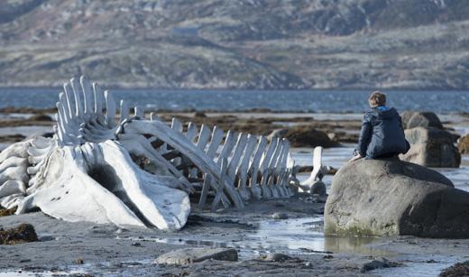 Кадр из фильма «Левиафан» / © Пресс-служба «Роскино»