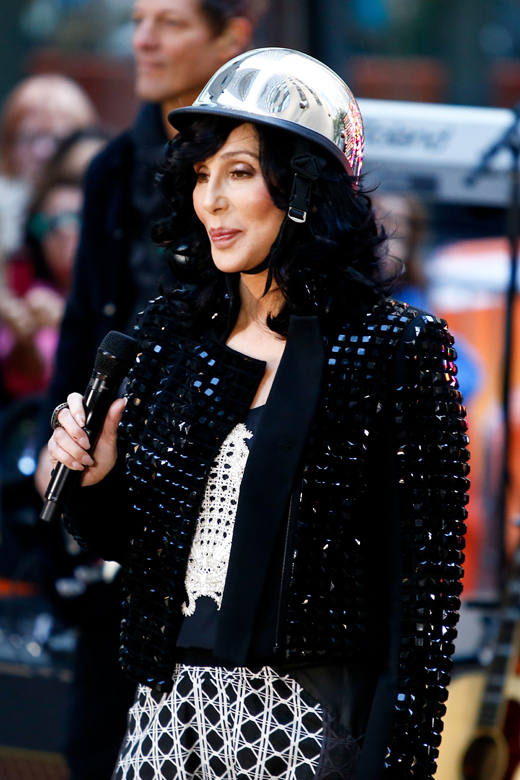 Шер (Cher) / © Debby Wong / Shutterstock.com