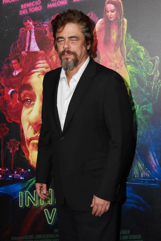 Бенисио Дель Торо (Benicio Del Toro) / © Depositphotos.com / s_bukley