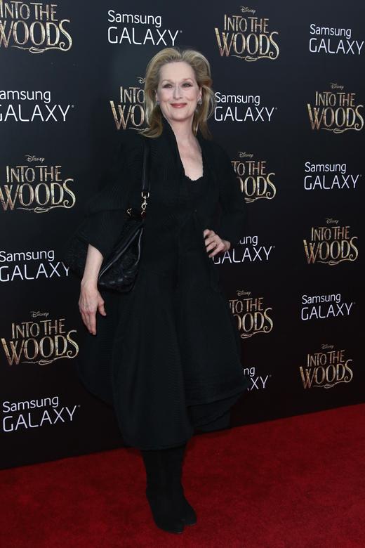 Мерил Стрип (Meryl Streep) / © Debby Wong / Shutterstock.com